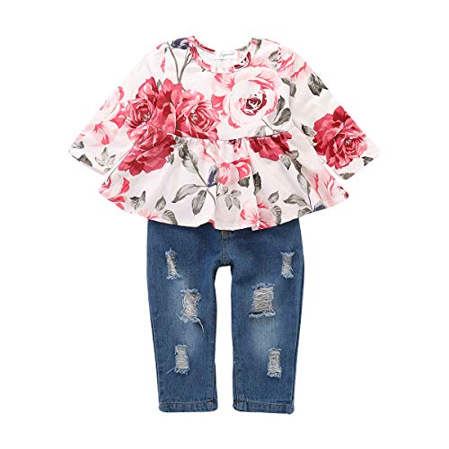 Newborn Girl Clothes Infant Ruffle Outfits Long Sleeve Floral Shirt Tops+ Blue Jeans for Girls Baby Ripped Denim Pant Set 9-12 Month Girl Clothes