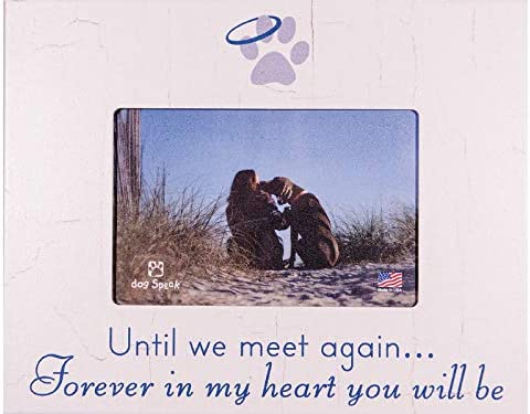 Until We Meet Again...Forever in My Heart You Will Be DOG MEMORIAL PICTURE FRAME