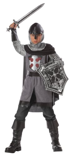 King Slayer Costume (California Costumes Toys Dragon Slayer, Medium)