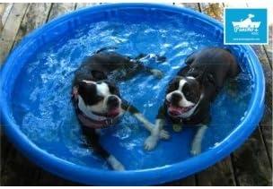 Piscina para Perros Pequeña (90X90X18)