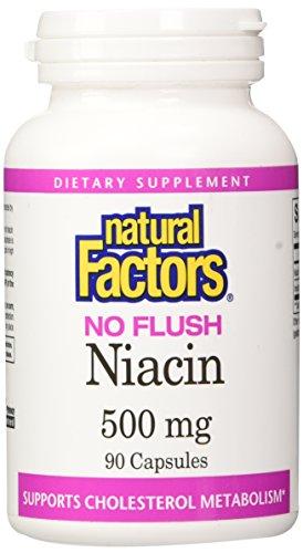 Flush Niacin Cholesterol - Natural Factors - Vitamin B3 No Flush Niacin 500mg, Supports Cholesterol Metabolism, 90 Capsules
