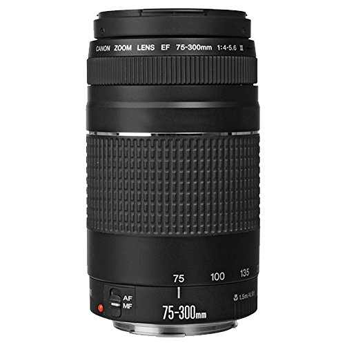 41tAAcPH0GL - Canon EOS Rebel T6 Digital SLR Camera + Canon 18-55mm EF-S f/3.5-5.6 IS II Lens & EF 75-300mm f/4-5.6 III Lens + Wide Angle Lens + 58mm 2x Lens + Slave Flash + 64GB Memory Card + Wired Remote + Bundle