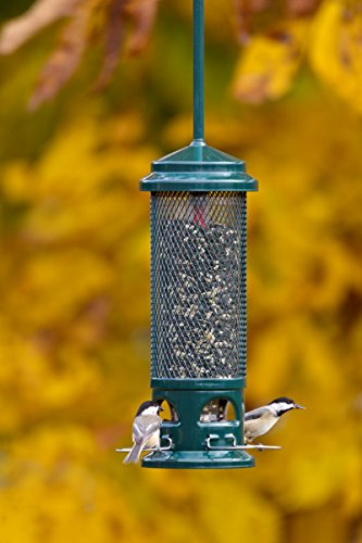 brome-squirrel-buster-legacy-wild-bird-feeder