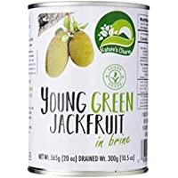 Nature's Charm Jackfruit Salmuera 565g | Vegan |