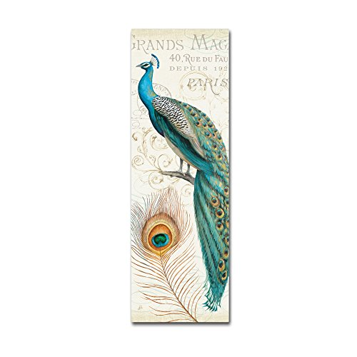 Majestic Beauty II Artwork by Daphne Brissonnet, 10 by 32-Inch Canvas Wall Art (Art Com Feather Print)