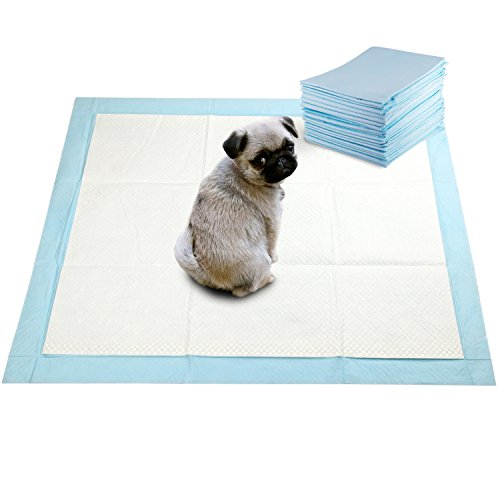 Wee Puppy Training (GOBUDDY Super Absorbent Pet Training Puppy Pads - 60 Count)