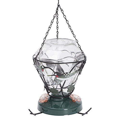 Price comparison product image Birdscapes 701 Hummingbird Edition 24-Ounce Glass Hummingbird Feeder