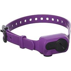 Dogtra iQ No Bark Collar, Purple