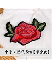 HATCHMATIC A lettle Big Sunbling 1 pcs Embroidered Flowers Sew On Lace Patches Colorful Applique Sticker for Women Dress Clothing: 02