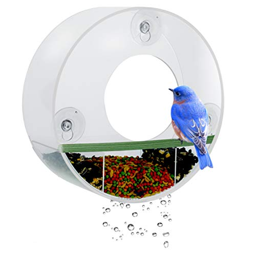 Window Feeder Tube (Birdious Tube Window Bird Feeder– Watch Backyard Wild Birds from Home– Removable Tray, Large Squirrel Proof Birdhouse for Outside, Clear See Through, Strong Suction Cups – Decorative Round Design)