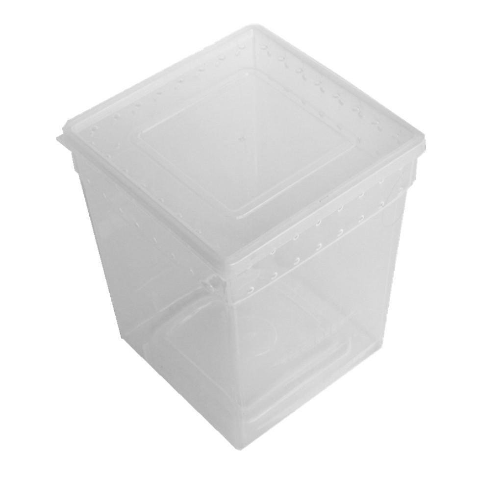 Karen Low Reptile Snake Breaded Dragon Lizards Breeding Box Case Feeding Hatching Container 7.87 x 7.87 x 9.84 Inch