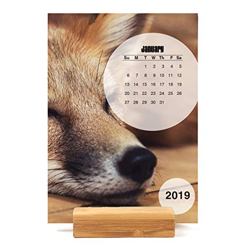 (Sly as a Fox Easel Desk Calendar)