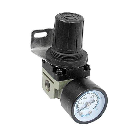 AR2000 02 Adjustable Pressure Pneumatic Regulator product image