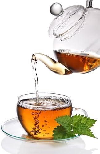 White Tea /& Cactus Premium Fragrance Oil 16 Oz Bottle