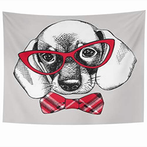 ry Hanging, 80 x 60 Inches Puppy Beagle Red Checkered Tie Wildlife Dog Hand Funny Glasses Hipster Face Cute Sketch Retro Tapestries, Decor for Home Bedroom Living Room Dorm ()