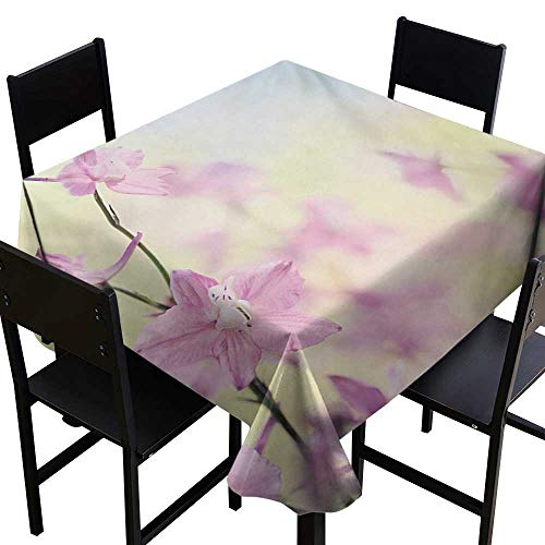 (Glifporia Tablecloth Covers for Home Floral,Larkspur Petals with Bokeh Backdrop Summer Season Botany Bouquet Image,Baby Pink Pale Green,W36 x L36 Square)