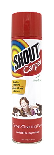 Shout Carpet Aerosol Carpet Cleaning Foam with Oxy | Carpet Stain Remover and Odor Eliminator, 22 Ounces