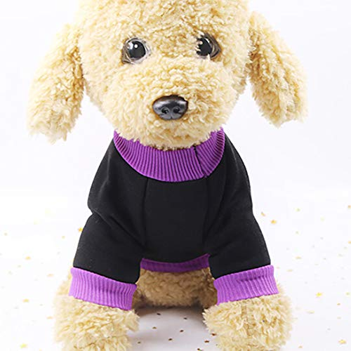 Hpapadks Halloween Pet Witch Sweater ,Pet Puppy Purple Witch Sweatshirts Dog Clothes Costume Halloween Puppy Best Gift