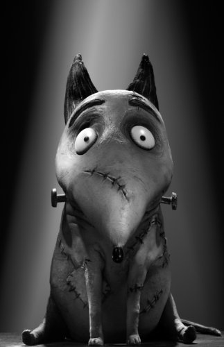 Frankenweenie 11x17 inches HD Photo Poster #06