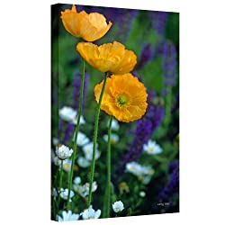 Art Wall Kathy Yates La Playa Poppies Gallery Wrapped Canvas Art, 48 By 32-inch