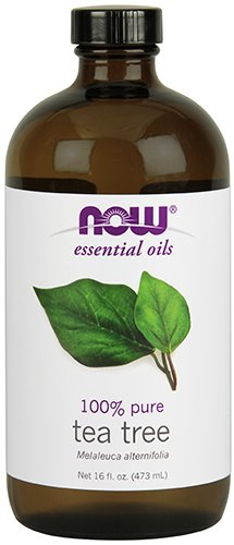 NOW Essential Oils, Tea Tree Oil, Cleansing Aromatherapy Scent, Steam Distilled, 100% Pure, Vegan, 16-Ounce by NOW Foods