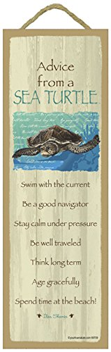 (SJT ENTERPRISES, INC. Advice from a Sea Turtle Primitive Wood Plaque, Sign - Measure 5