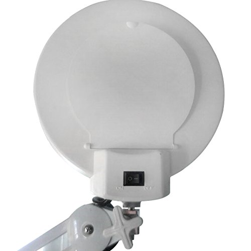 daylight magnifying lamp | eBay