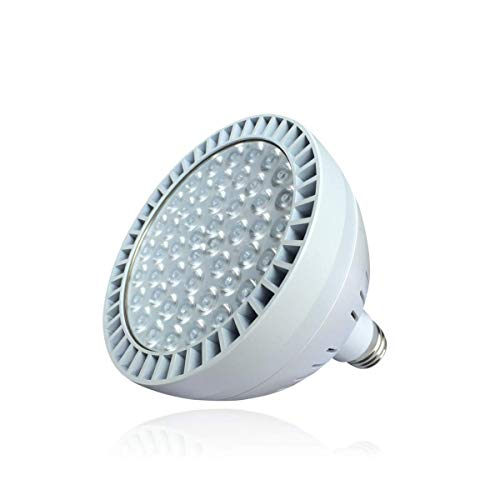 LED Pool Light 60W 5400lm High Brightness White Light 6500K Replacement for 500W Incandescent Bulbs in Pool Light (120V,60W)