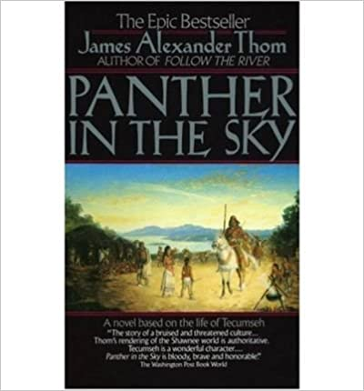 Book Panther in the Sky