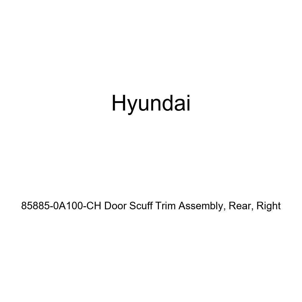 Right Genuine Hyundai 85885-0A100-CH Door Scuff Trim Assembly Rear