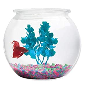 Koller Products 2-Gallon Fish Bowl - BL20RPET 4
