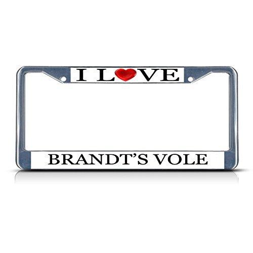 ve Heart Brandt'S Vole Chrome Metal License Plate Frame Tag Border ()