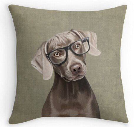 Unique Style Mr Weimaraner For Boys Product Cover Throw Case Two Size Pillowcase Bedding Set Cover 18x18 Inch