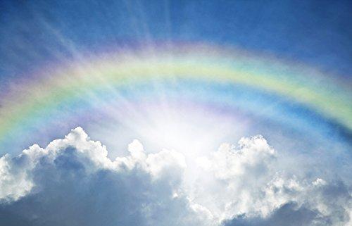 Garden Winds - Gazebo Back Drop Screen Kit - Rainbow - 114
