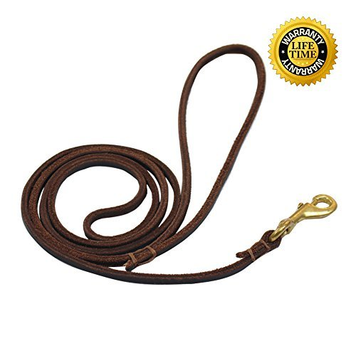 Captain Pet 5.3 feet Soft Leather Pet Leash for Small Dogs Training and Walking (M, Thin) by Captain Pet
