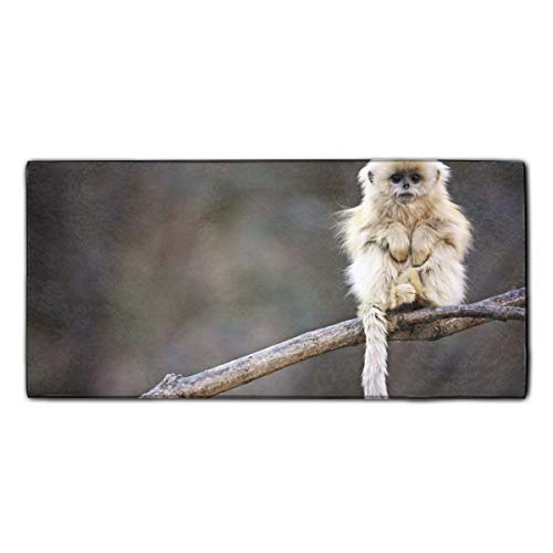 Snub-nosed Monkey Roxelana Wolong Printed Microfiber Cleaning Cloth/Guest Hand Towel for Drawing Room and car 11.8x27.5