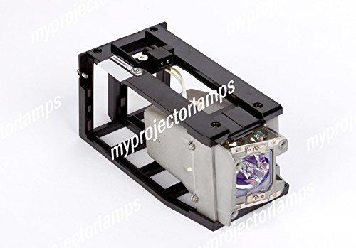 交換用プロジェクターランプ エイサー EC.K2500.001   B00PB4KRWQ