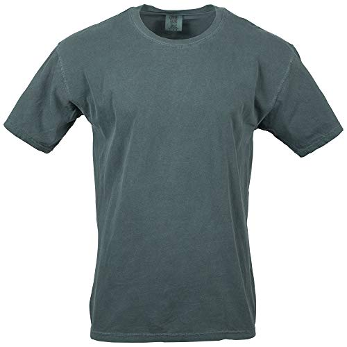 (Comfort Colors Men's Adult Short Sleeve Tee, Style 1717, Blue Spruce, Large)