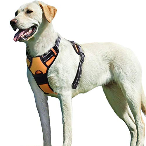 Eagloo Dog Harness No Pull, Walking Pet Harness with 2 Metal Rings & Handle Adjustable Reflective Breathable Oxford Soft Padded Easy Control Front Clip Vest Harness Outdoor for Large Dogs Orange