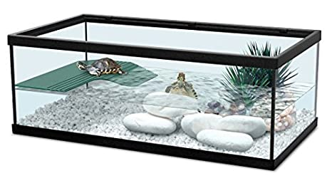 Zolux 55 Noir - Acuario para tortugas de agua (incluye filtro), color negro: Amazon.es: Productos para mascotas