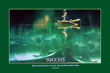 (36×24) Fishing motivational poster success, persistence art print