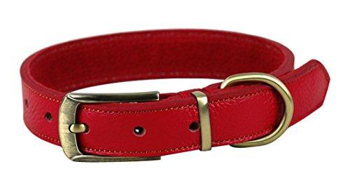 ZEEY Soft Leather Adjustable Basic Neck Belt Collar for Dogs, Neck 35cm-45cm and 2.5cm Wide, Easy to Use Copper Collar…