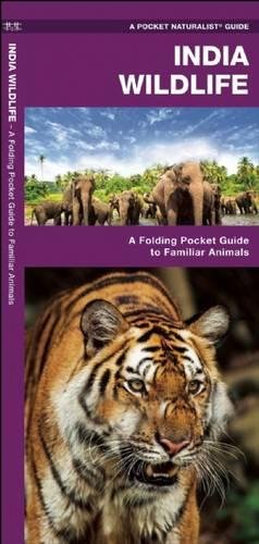 India Wildlife: A Folding Pocket Guide to Familiar Animals (A Pocket Naturalist Guide)