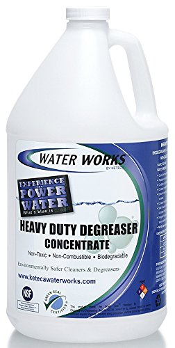 Water Works Heavy Duty Degreaser Concentrate, 1 Gallon from Water Works