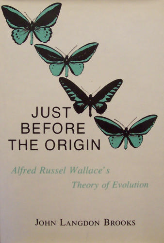 739b61b31 ... Just Before the Origin  Alfred Wallace s Theory of Evolution · Guide  For Industrial Waste Management. thumbnail  Ella Griffin  ↠ the memory shop  ...