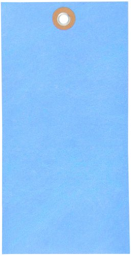 Tyvek G14081A Empty-Eyelet Shipping Blank Tag, Spunbonded Olefin, 6-1/4'' Height x 3-1/8'' Width, Blue (Case of 100) by Tyvek