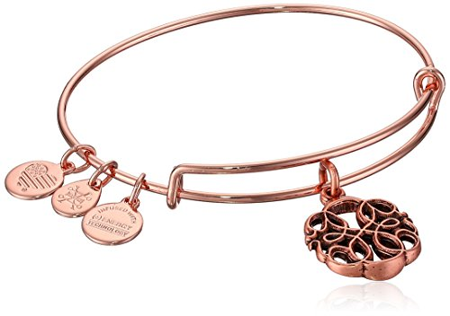 (Alex and Ani Women's Path of Life Rose Gold Charm Bangle Bracelet, Expandable)