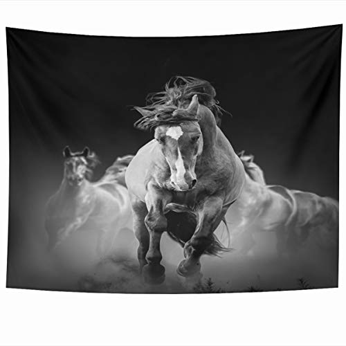(Ahawoso Tapestry Wall Hanging 60x50 Inches Run Black Wild Horses Running Dark Dust Darkness Nature Motion Movement Thoroughbred Herd Home Decor Tapestries Art for Living Room Bedroom Dorm)