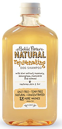 Bobbi Panter Natural Rejuvenating Shampoo, 14.2-Ounce