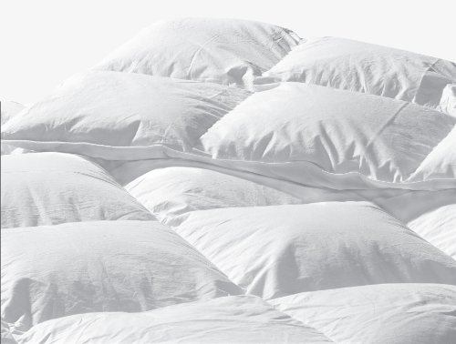 Highland Feather Manufacturing 25-Ounce Santa Barbara Goose Down Duvet, Queen, White